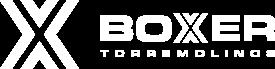 Boxer Torremolinos Logo